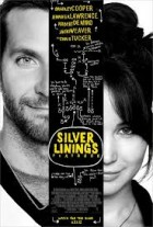 The Silver Lining Playbook (2012) Reviewed By Jay